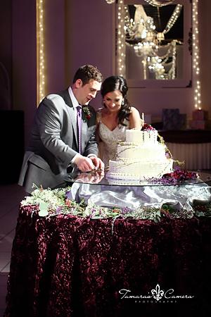 weirton wedding photographer, pittsburgh wedding photographer, spring wedding, bride and groom, st. florian hall, wintersville OH, cake cutting, wedding cake